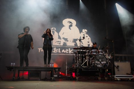 The Black Mamba