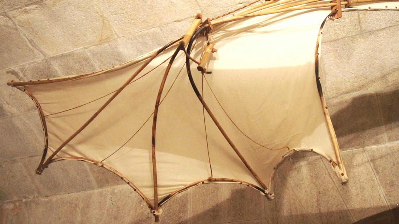 Planador (pormenor de asa) - Asa semelhante à do morcego - membrana.