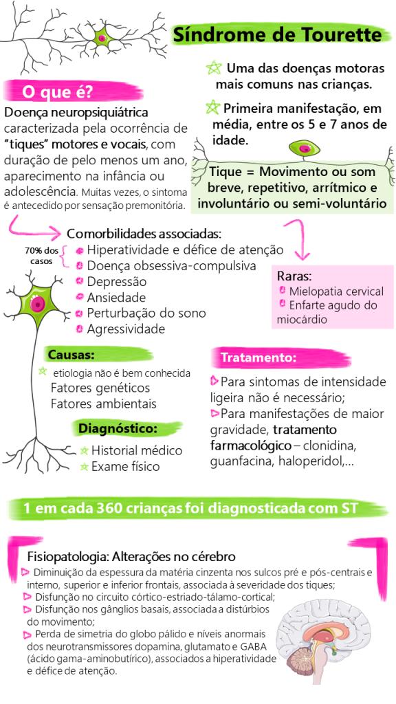 Infografia: Sofia Moreira