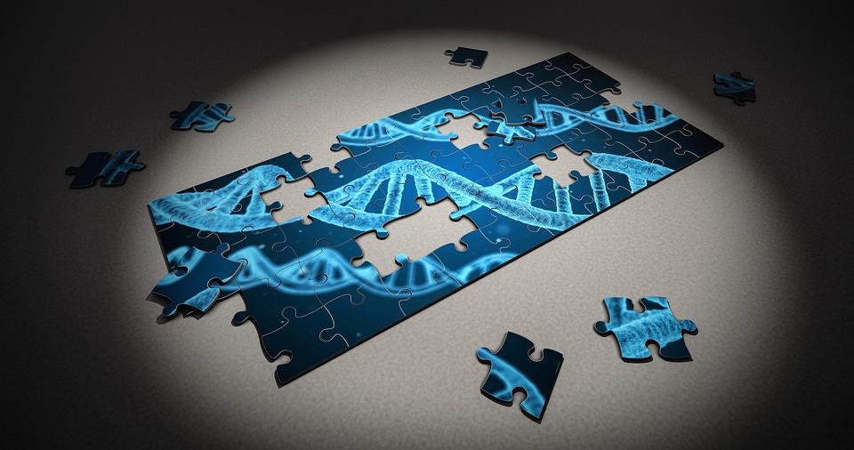 Edição genética e desextinção de espécies