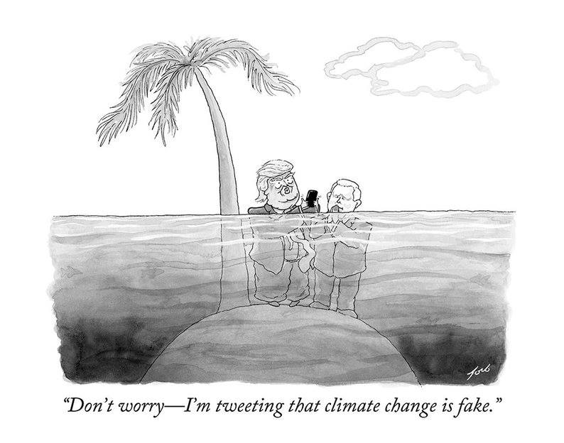 [Foto: The New Yorker]