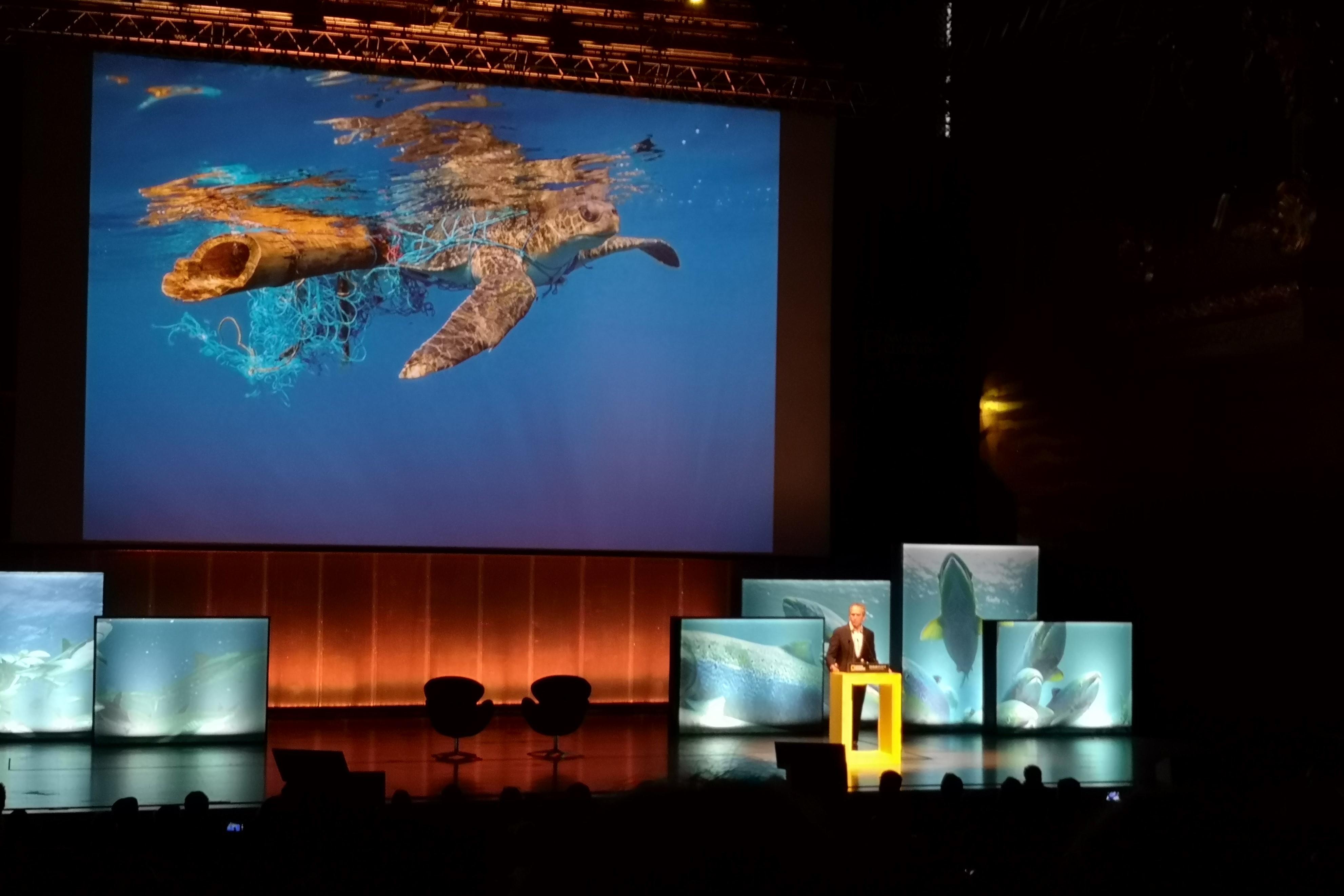 Na intervenção de Brian Skerry discutiu-se o poder da comunicação através da imagem. Fotografia: Mariana Miranda.