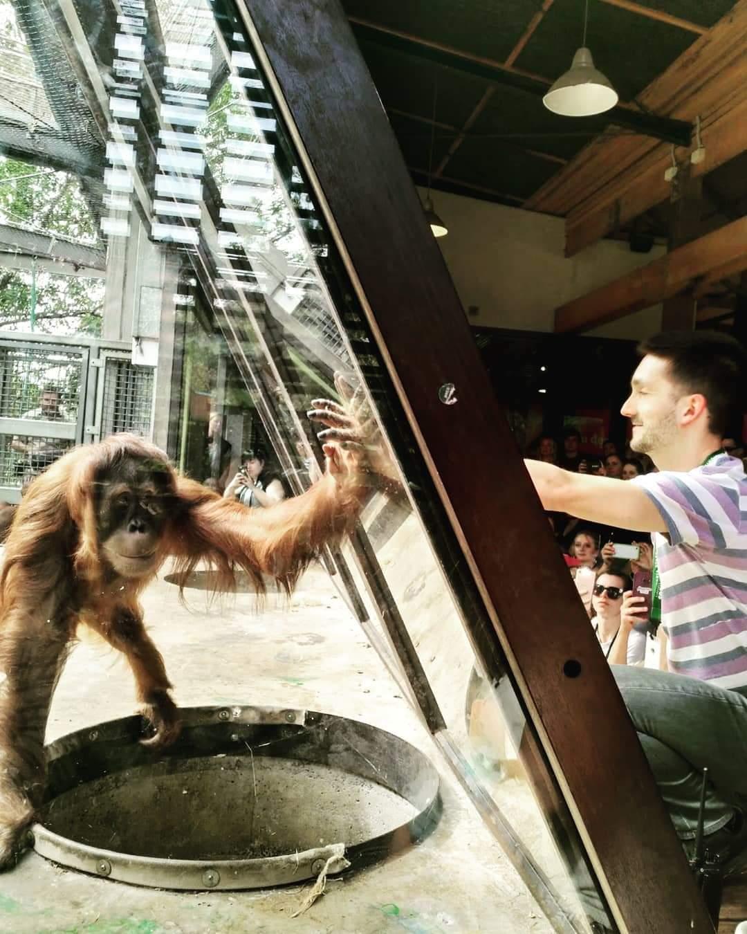 José Gomes considera que os Jardins Zoológicos têm um papel importante na conservação de espécies e na educação da população.