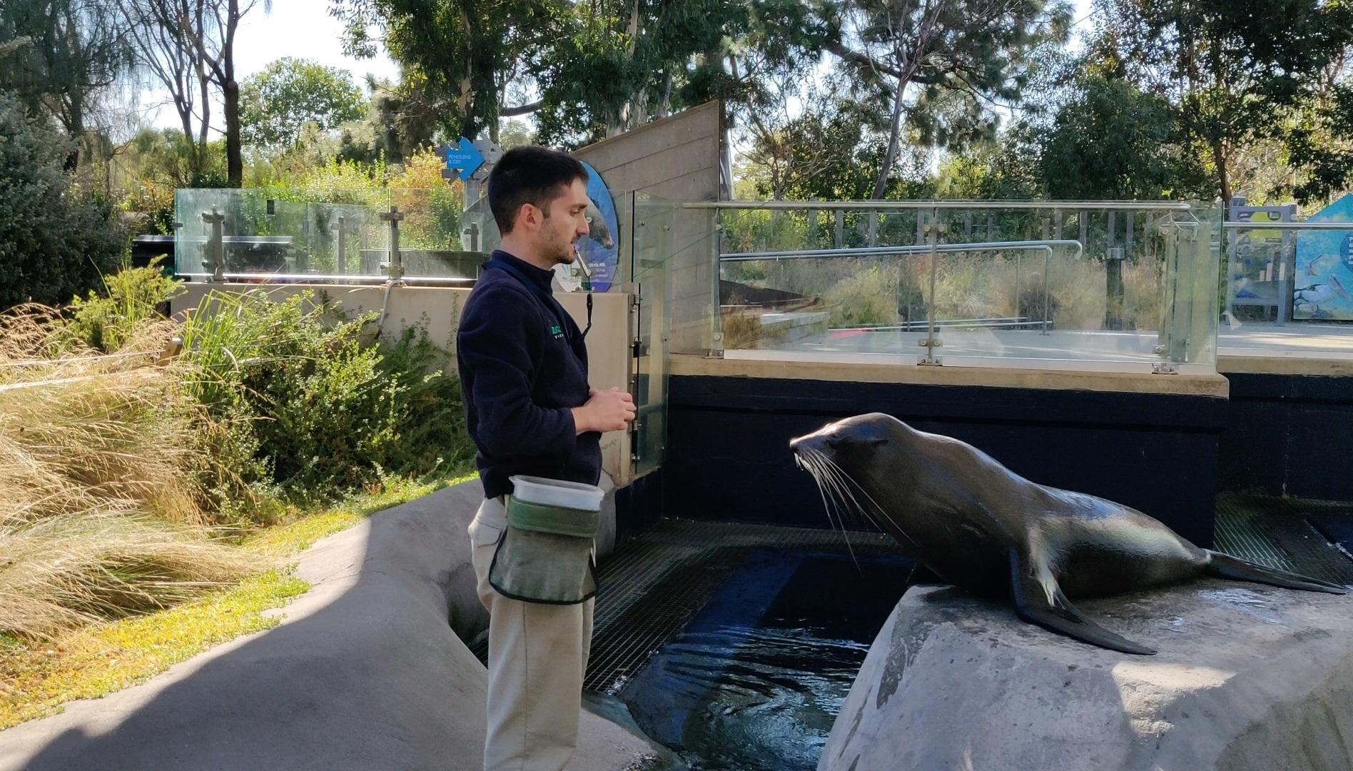José_Gomes_cuidador_animais_Austrália