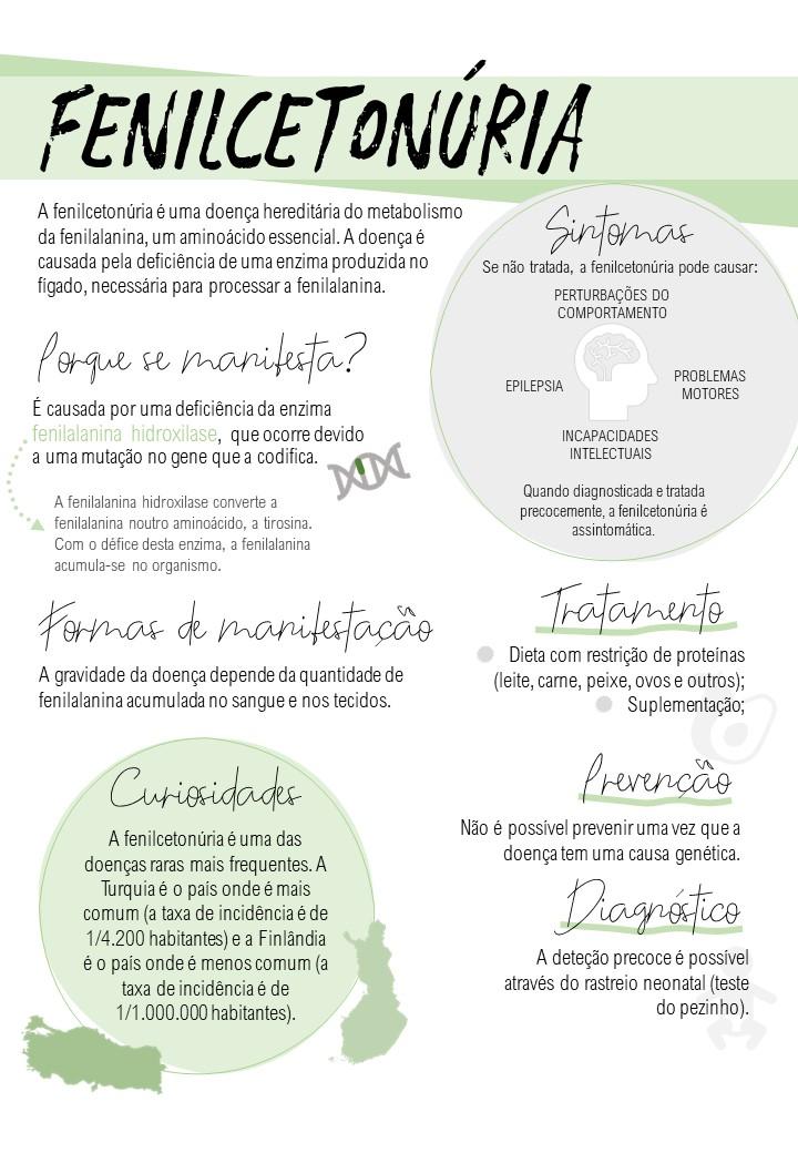 Infografia: Ana Luísa Costa.