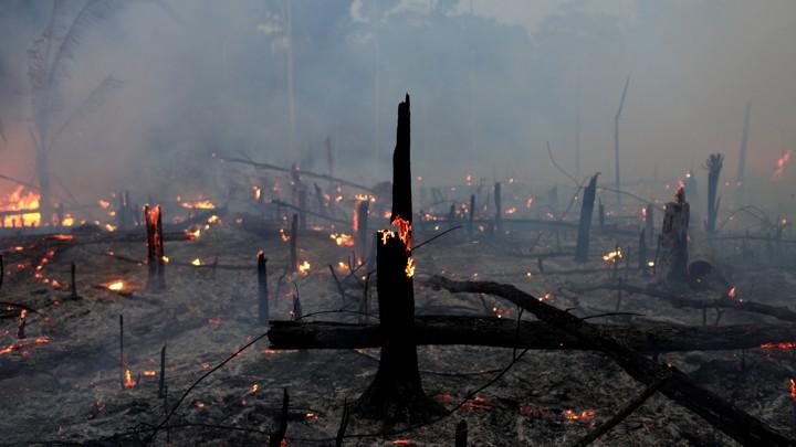 [Foto: REUTERS/Ricardo Moraes]