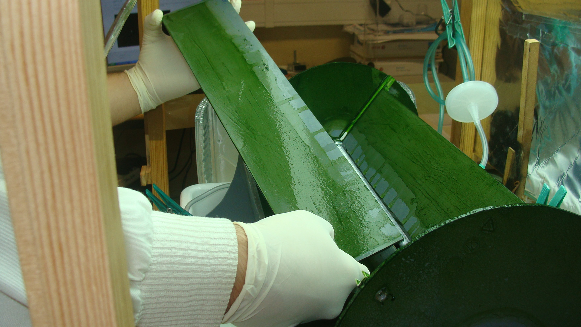 """""""Rotating Flat Plate Photobioreactor"""": crescimento de microalgas em biofilme."""